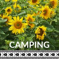 album_camping