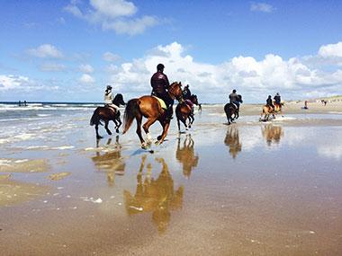 Healthy holiday - Paardrijden in Zeeland